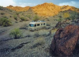 Coyote Camping near Lake Havasu, Arizona