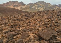 Visit Mars without leaving America