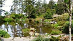 ShoreAcres-SP-garden-RVT-743