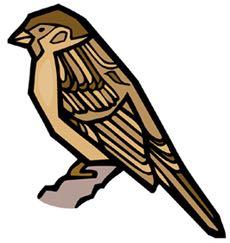 bird-744