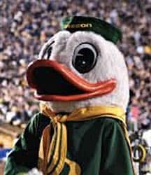 duck-766