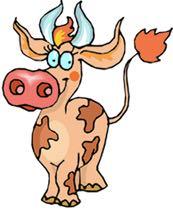 cow-766