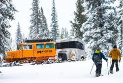snowbambi-rvt-773