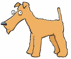 Can you read dog (body) language?