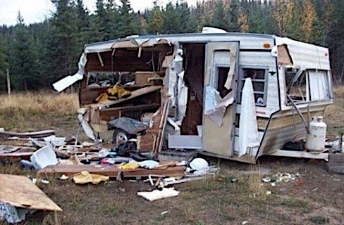 Hungry bear rips through RV's side to enter. See the photo