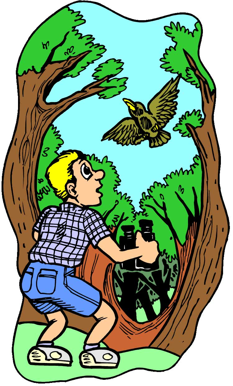 How to pick out binoculars and correctly use them – Did you