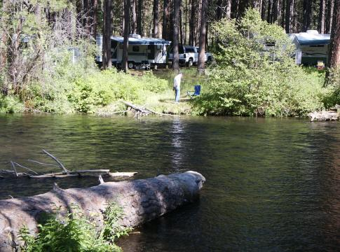 Camp on the tree-shaded river bank of Oregon's Metolius Recreation Area