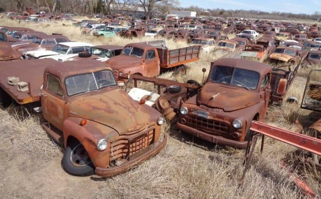 A junkyard of cars in Kansas includes more than 1,000 cars and trucks for sale.