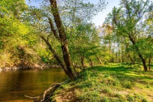 Available RV sites at Pigeon Forge