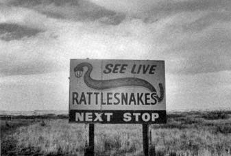 'Live Rattlesnakes,' read the sign by the lonely road. A vanishing America